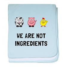 Not Ingredients baby blanket