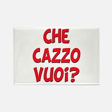 italian Che Cazzo Vuoi Rectangle Magnet (10 pack)