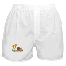 Snail Flowers Boxer Shorts
