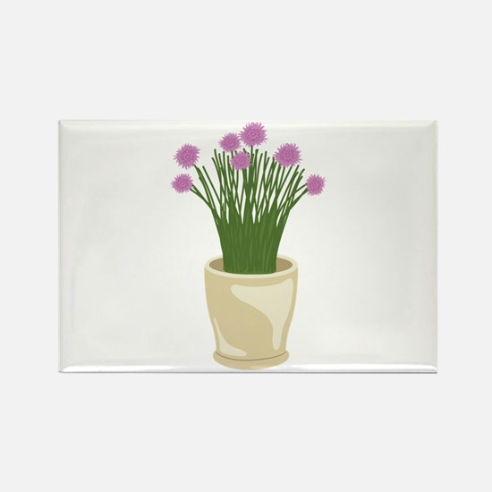Potted Chive Plant Magnets