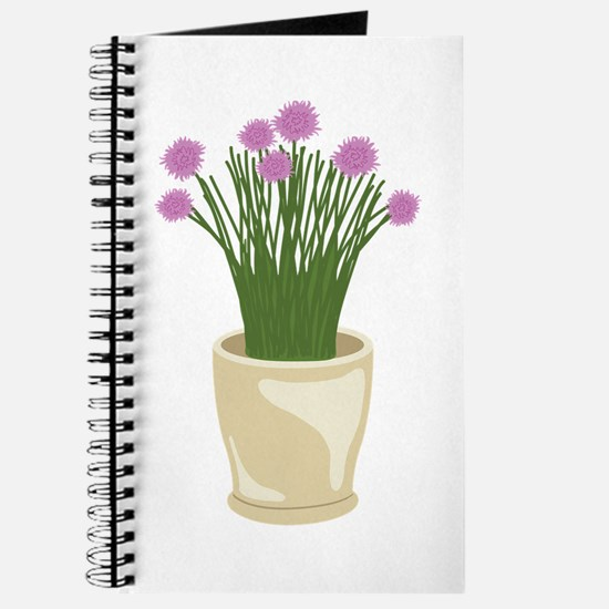 Potted Chive Plant Journal