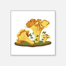 Chanterelle Mushrooms Sticker