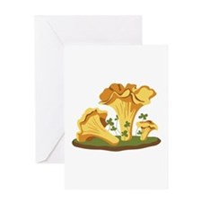Chanterelle Mushrooms Greeting Cards