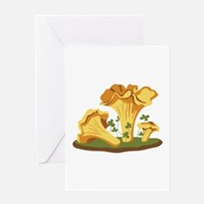 Chanterelle Mushrooms Greeting Cards