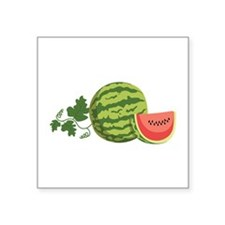 Watermelon Vine Sticker