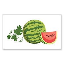 Watermelon Vine Decal