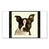 Boston terrier kisses 10 Pack
