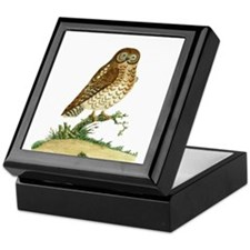 The Ominous Owl by Latham Keepsake Box