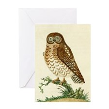 The Ominous Owl by Latham Greeting Cards