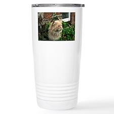 Maine Coon Cat Kato Travel Mug