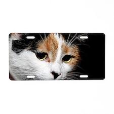 Calico Cat Chiara Aluminum License Plate