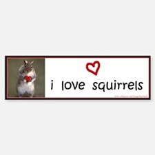 Squirrel Lover's Bumper Sticker - i love squirrels
