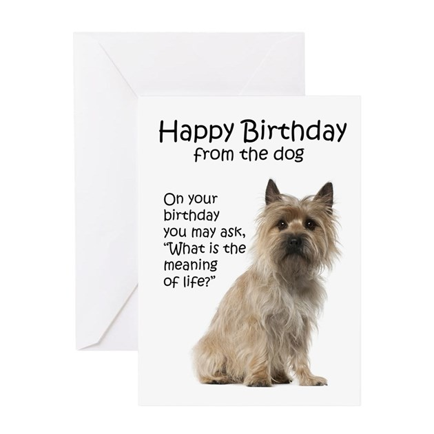 Cairn Terrier Birthday Cards By Shopdoggifts