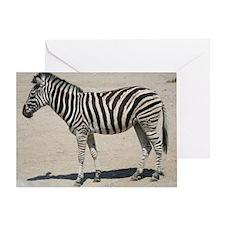 Zebra015 Greeting Card