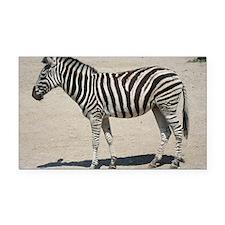 Zebra015 Rectangle Car Magnet
