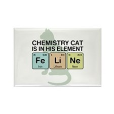 Chemistry Cat Rectangle Magnet