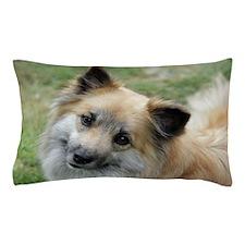 IcelandicSheepdog022 Pillow Case