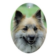 IcelandicSheepdog023 Oval Ornament