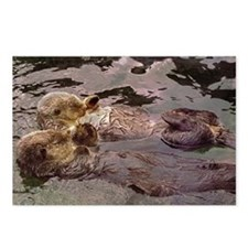 Sea Otters Holding Hands Postcards (Package of 8)