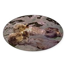 Sea Otters Holding Hands Decal