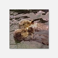 "Sea Otters Holding Hands Square Sticker 3"" x 3"""