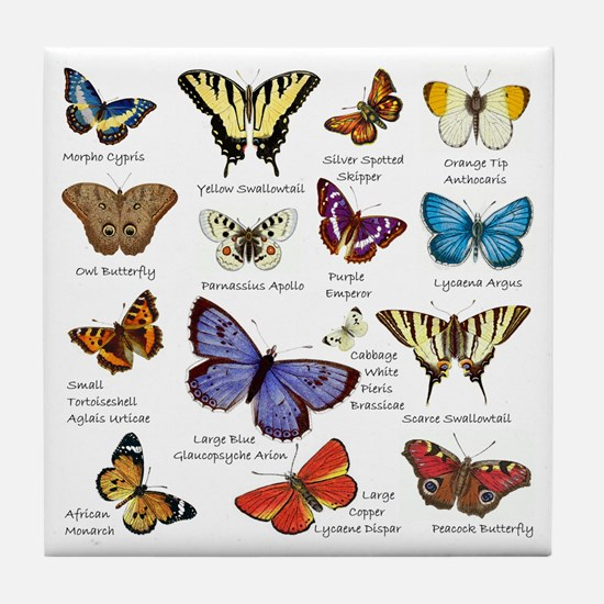 Butterfly Illustrations full colored Tile Coaster