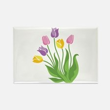 Tulips Plant Magnets