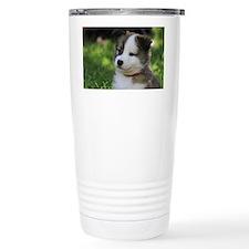 IcelandicSheepdog031 Travel Mug