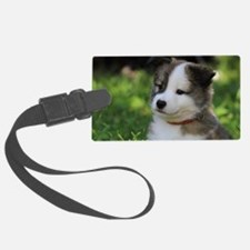 IcelandicSheepdog031 Luggage Tag