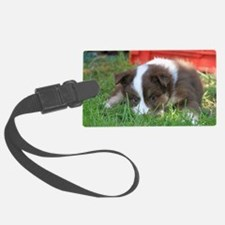 IcelandicSheepdog032 Luggage Tag