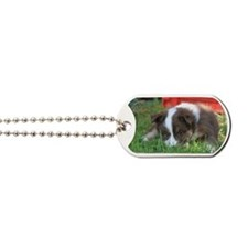 IcelandicSheepdog032 Dog Tags