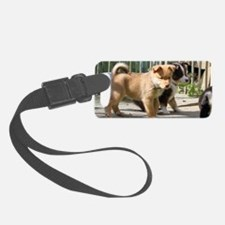 IcelandicSheepdog035 Luggage Tag
