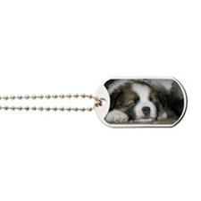 IcelandicSheepdog028 Dog Tags