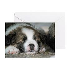 IcelandicSheepdog028 Greeting Card