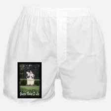 General Robert E. Lee 2 Boxer Shorts
