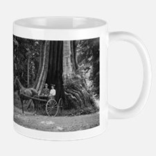 Carriage in the Hollow Tree Mugs