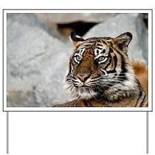 Tiger029 Yard Sign