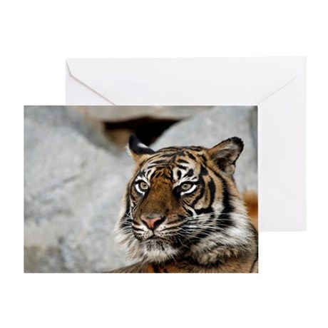 Tiger029 Greeting Card