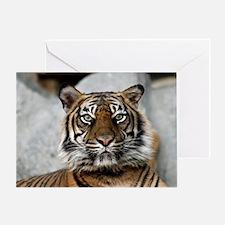 Tiger030 Greeting Card