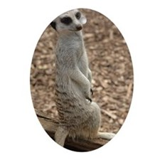 Sweet Meerkat Oval Ornament