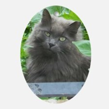Long Haired Russian Blue Cat Ornament (Oval)