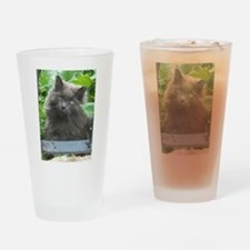 Long Haired Russian Blue Cat Drinking Glass