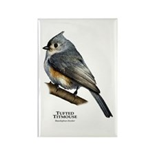 Tufted Titmouse Rectangle Magnet