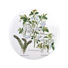 "Vintage Flowers by Basilius Besler 3.5"" Button"