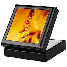 This Dragon's On Fire! Cool Keepsake Box