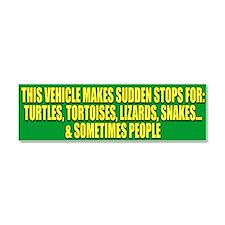 Cute Reptile Car Magnet 10 x 3