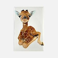 baby giraffe Rectangle Magnet