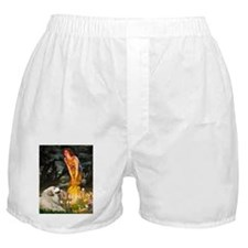 810-MidEve-GrPyr2.png Boxer Shorts