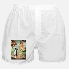 VENUS-GSMD1.png Boxer Shorts