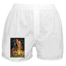 5.5x7.5-MidEve-Irishsam.png Boxer Shorts